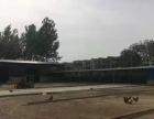 谯东镇辛各自来水厂北侧4000平米