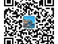 上海搬家物流 行李托运 全国零担 专业打木架 物流公司