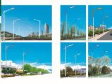 厂家低价供应各种规格 7米8米高邮 路灯  道路灯 单双臂灯