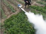 脉冲式弥雾机 脉冲式汽油打药机 果园专用水雾烟雾机低油耗