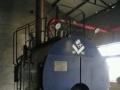 浙江地区高价回收燃气锅炉燃油锅炉