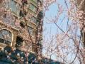 北京周边香河安平 香汐小区91平米南北通透三居业主诚售