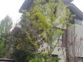 大理小院子 写字楼 300平米