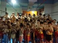 暑假散打培训班 暑期少儿武术培训班来龙腾武悦20年培训经验