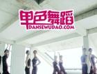 单色舞蹈常规拉丁瑜伽肚皮中国舞爵士街舞招生