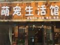 叶县萌宠生活馆致敬中国女排1⃣️2⃣️年后重回世界颠峰