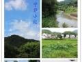 黄山北门农家小院