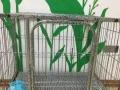 搬家急卖狗笼贵宾小型犬泰迪比熊狗笼狗窝铁笼