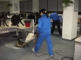 惠州地毯清洗惠州洗地毯就选春华公司专业又便宜