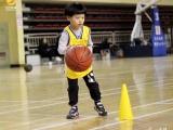 北京懂过我体育篮球培训学校 动因篮球俱乐部