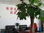 金川创业园写字楼 11楼 94平米 带全部办公家具