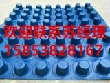 济南凹凸型排水板