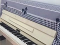 琴韵琴行招钢琴,合唱学员