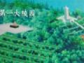 薛城合法景观陵园(公墓)
