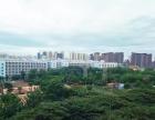 凤凰路七彩阳光两室出租 家具全新 小区环境好 生活方便近市场