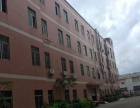 横岗安良500平米全新装修厂房仓库办公室低价出租可分租