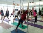 重庆专业钢管舞爵士舞培训 重庆专业舞蹈培训