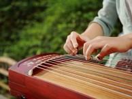 上海曹路 古筝 乐理音乐艺术培训