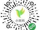 权威的小程序,湖南专业的微信小程序公司