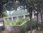 陶庄镇河北庄村 土地 2000平米