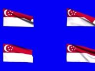 成都签证公司代办新加坡63天多次往返社交签证 歌星签证