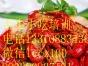 小龙虾技术培训舌尖小吃实操教会麻辣十三香小龙虾 长沙口味虾!