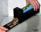 桂林灭鼠公司.专业灭鼠.赫鼎鸿灭鼠服务