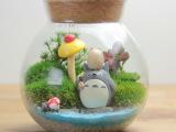 微景观玻璃瓶 苔藓瓶 多肉植物花瓶 软木塞密封罐茶叶罐