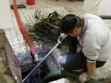 北京專業清理化糞池清掏化糞池抽化糞池抽糞