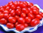 新鲜水果配送/水果果篮果盒批发/鲜切水果定制批发配送