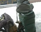 哈尔滨中通快递免费上门取件,免费包装,