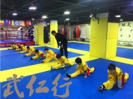 上海成人武术散打截拳道培训