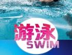 游泳 健身 火热进行中
