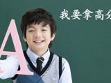上海虹口小学三年级数学暑假辅导班,1对1