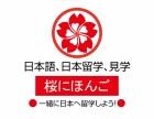 日本留學申請權威機構,櫻花國際日語一站式留學服務