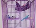 出售三层猫笼