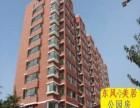 虎门中心区小产权房 南栅东风社区 3栋小区东风美居