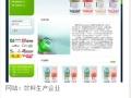 重庆方升科技,为你建设自己网站平台,助中小企业成长