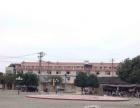 柳城县沙浦镇209国道旁 233平米【押一付三】