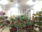 鲜花花束、特色绿植盆栽、绿植租摆