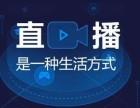 北京網紅主播平臺招商加盟