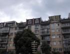 盘龙江畔,自带鸽舍房屋出售盘龙江畔,自带鸽舍房屋出售