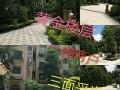 江南客天下叠院西班牙园林风情电梯5楼大四房两厅三卫186平米