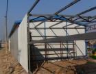 大興區 彩鋼房制作 彩鋼板換頂安裝