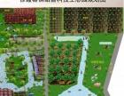 江阴生态园农家乐,农家餐饮聚餐、垂钓、户外烧烤
