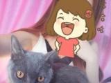 可爱的猫猫找可爱的主银