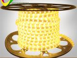厂家直销 高亮度led灯带 220V白光/暖白  装饰必备防水l