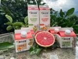 半自動果汁紙盒灌裝機廠家沈陽北亞