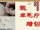 挑羊毛疔培训北京天医