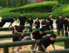珠海企业团队建设 金牌教练一对一为你制定方案!